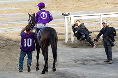 Bit the Bullet (Lopez, Erick) (avatarsound) Tags: boston suffolkdowns suffolkdownssendoff horse horseracing horses jockey jockeys race racetrack racing rider riding sport