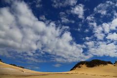 "carlo sand blow, cooloola coast, queensland, australia (ISO 69) Tags: ""rainbowbeach"" australien queensland dunes düne sand australia"