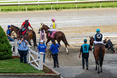 Race 10 - post parade (avatarsound) Tags: boston suffolkdowns suffolkdownssendoff horse horseracing horses jockey jockeys race racetrack racing rider riding sport