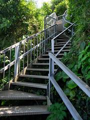 Stairway to Heaven (kasa51) Tags: stairs cliff yokosuka japan 階段 崖 猿島