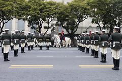 Granadiers (pusadolfo) Tags: 2019 9dejulio argentina buenosaires desfile independence independencia militar military people street
