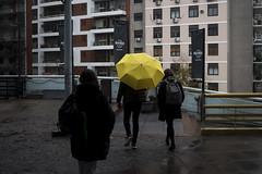 Yellow (pusadolfo) Tags: 2019 argentina buenosaires hardrockcafe motiquedada mqrecoleta recoleta