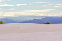 white sands tones (Robert Borden) Tags: nature photoday momenttribe instadaily beautiful perfect good canon newmexico nm landscape landscapephotography travel whitesands instaphoto camera composition instafocus visuals igworldclub aesthetics throughthelens exposure moment fujifilmxt2 canonrebel
