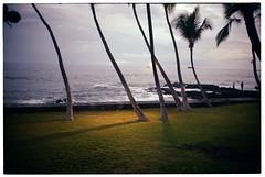 hawaii (authentic hawaiian shirt) Tags: kona hawaii kodacolor