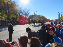 chicago cubs world series parade. 2016 (timp37) Tags: chicago illinois world series parade cubs november 2016 clydesdales budweiser beer