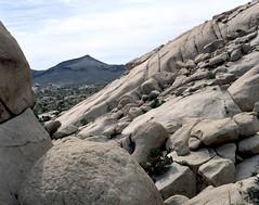 Caught Between a Rock and a Hard Place (Scott Holcomb) Tags: granitemountains mojavenationalpreserve california asahipentax6x7 supermulticoatedtakumar6x714575mmlens zenzabronica82mml1afilter kodakportra160film 6x7 mediumformat 220film epsonperfectionv600 photoshopdigitalization