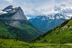 Glacier National Park, West Glacier, Montana (paccode) Tags: solemn d850 colorful landscape tree snow canyon nationalpark summer serious valley glacier montana quiet mountain westglacier unitedstatesofamerica