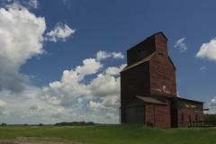 Old sentinel (Len Langevin) Tags: grain elevator prairie sentinel alberta nikon d7100 tokina 1116