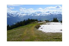 End of May and still too much snow (balu51) Tags: abendspaziergang alp landschaft berge schnee krokus wildblumen blumen frühling graubünden surselva mai 2019 copyrightbybalu51