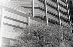 JCH Pan roll - London / Stratford (Alexander Savin) Tags: jch jchpan 35mm film blackandwhite olympusom10 olympus london stratforduponavon