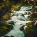 Selke Wasserfall im Harz