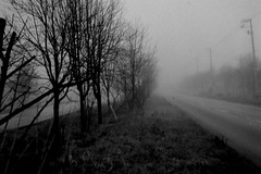 Foggy morning (shou yokoya) Tags: film 135 35㎜ bw bessat voigtlănder nokton classic 40㎜ kodak trix 400tx 400 analogue mist fog foggy