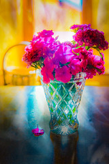 Flowers in the morning light (judy dean) Tags: judydean 2019 france chaletsavoiefaire lensbaby texture ps flowers sweetwilliams pink window light vase