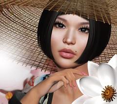 ♥ (♛Lolita♔Model-Blogger) Tags: lolitaparagorn session arte euphoric lelutka blog blogger beauty blogs bento