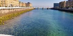 Ambiente veraniego en Donostia (eitb.eus) Tags: eitbcom 32961 g151862 tiemponaturaleza tiempon2019 verano gipuzkoa donostiasansebastian jonhernandezutrera