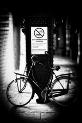 Anglų lietuvių žodynas. Žodis anarchy reiškia n anarchija lietuviškai.