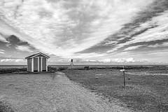 _DSF5814.jpg (Fred H, H. Heitmann) Tags: ©fredheitmann blackwhite flickr skåne landscape landschaft nature fhh1962 malmö allrigthsreserved fujifilmxt2 schwarzweis monochrom xf1855mmf284rlmois natur schweden skanör skånelän