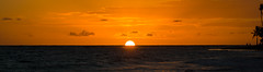 Waking Up To Beauty (MrWhippy99UK) Tags: sky sun sunrise yellow orange clouds cloud sunlight sunshine horizon water sea ocean dominican republic holiday vacation waves tree palm trees people outline silhouette shadow shadows rays sunwrays caribbean canon efs