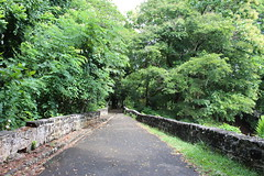 Crossing the Bridge (Rckr88) Tags: pamplemousses mauritius crossing bridge crossingthebridge bridges road roads street streets walk walkway pathway path nature naturalworld greenery green tree trees travelling travel outdoors garden gardens botanical botanicalgarden botanicalgardens