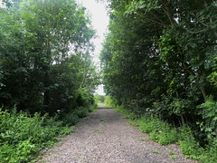 Former railway trackbed, Hazlemere Rd, Creswell.    (Former Staveley - Creswell line)   July 2019 (dave_attrill) Tags: ballast embankment creswell hazlemereroad disused railway line trackbed passenger goods abandoned clowne poolsbrook staveleytocreswell midland chesterfield derbyshire path cyclepath bridleway resurfaced july 2019