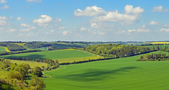 Spring scene, Baydon, Wiltshire, England (Oswald Bertram) Tags: berkshiredowns primavera countryside spring printemps frühling lambourndowns northwessexdowns northwessexdownsaonb greatbritain uk