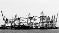 Hamburg harbour- these things crop up everywhere!-2 (grahamrobb888) Tags: hamburg germany d500 nikon nikond500 nikkor blackwhite water blackandwhite monochrome contrast harbour harbourindustry containerport graham robb photos
