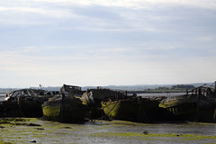 Where boats are laid to rest (Boat graveyard at Hoo Marina) (DESPITE STRAIGHT LINES) Tags: boat derelictboat marina hoomarina hoostwerburgh derelictboatsathoomarina decay rotting mud lowtide nature mothernature naturalbeauty beauty kent landscape nikon24120mmf4 nikon24120mmf4gedvr england sunlight nikon d850 nikond850 nikkor24120mm nikon24120mm nikongp1 paulwilliams despitestraightlines flickr gettyimages morning getty gettyimagesesp despitestraightlinesatgettyimages