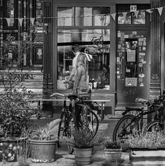 Window Shopping (michael_hamburg69) Tags: hamburg germany deutschland gängeviertel fuckyeah shop sexshopkollektiv caffamacherreihe47 shopwindow monochrome schaufenster