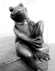 relax (hussi48) Tags: frosch frog bronze happy schwarzweis relaxed