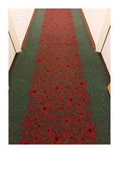 (Jordane Prestrot) Tags: jordaneprestrot ♋ couloir corridor corredor coquelicot amapola poppy carpet tapis alfombra ghent gand gent hôtel hotel