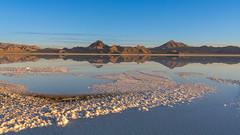 Salt Flats Morning (Star Wizard) Tags: wendover utah unitedstatesofamerica ce premier plan presque transparent