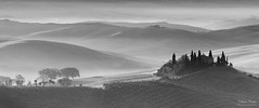 The Belvedere (Johan Konz) Tags: bw blackandwhite podere belvedere valdorcia sanquiricodorcia tuscany italy landscape outdoor sunrise mist fog rural hill mountain sky silhouette nikon d7500 tree cypress elitegalleryaoi bestcapturesaoi aoi