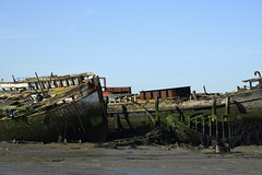 Where boats are laid to rest (Boat graveyard at Hoo Marina) (6) (DESPITE STRAIGHT LINES) Tags: boat derelictboat marina hoomarina hoostwerburgh derelictboatsathoomarina decay rotting mud lowtide nature mothernature naturalbeauty beauty kent landscape nikon24120mmf4 nikon24120mmf4gedvr england sunlight nikon d850 nikond850 nikkor24120mm nikon24120mm nikongp1 paulwilliams despitestraightlines flickr gettyimages morning getty gettyimagesesp despitestraightlinesatgettyimages