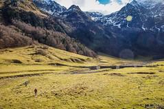 Bajando al río (SantiMB.Photos) Tags: 2blog 2tumblr 2ig artigadelin esbòrdes valldaran valdaran pirineos pyrenees lleida montañas mountains otoño autumn joèu 500px geo:lat=4267697817 geo:lon=070881624 geotagged bordeses cataluna españa