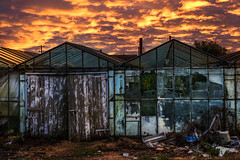 The greenhouse effect (Gullivers adventures) Tags: greenhouse effect sunset golden loght ireland north clouds abandoned glass house rubbish flickr landscape sky