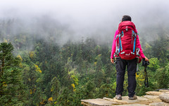 A trekker looking at the misty forest (phuong.sg@gmail.com) Tags: active activity admiration aged annapurna asia asian backpack balkan bay boulder cliff coast coastal explorer exploring fit forest heavy hills holiday khopra landscape looking male man mountains national nepal pack park path pine place posing rock scenery summer tourist trail travel traveller trees trekker trekking view walker walking woods