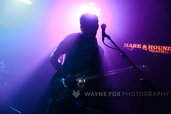 Modern Literature (Wayne Fox Photography) Tags: 1 08 08july2019 1570m 2019 4495626 52 modernliterature690847794623363 modernliteratu2 hareandhounds hareandhoundsbrum hareandhoundskingsheath kushikatsurecords kushikatsuuk waynejohnfox waynefoxphotography wearemodernliterature and birmingham brum fox hare hounds john july kingdom kushikatsu literature live livemusic midlands modern modernliterature monday music nightlife photography records the thehareandhounds uk united unitedkingdom wfp wayne waynefox west westmidlands birminghamuk fullgallery gig httpwwwflickrcomwaynejohnfox httpwwwwaynefoxphotographycom httpsinstagramcomwaynefoxphotography httpstwittercomhareandhounds httpstwittercomkushikatsuuk httpstwittercomwaynejohnfox httpswwwfacebookcomhareandhoundskingsheath httpswwwfacebookcomkushikatsurecords httpswwwinstagramcomhareandhoundsbrum httpswwwinstagramcomkushikatsurecords infowaynefoxphotographycom lastfm:event=4495626 life midland night waynejohnfoxhotmailcom england mybestlivework livemusicfavourites
