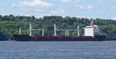 Redhead - IMO 9413901 (J. Trempe 3,990 K hits - Merci-Thanks) Tags: stefoy quebec canada ship navire fleuve river stlaurent stlawrence vraquier bulker redhead