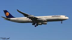 Airbus A340 -313 LUFTHANSA D-AIFD 0390 Francfort Mai 2017 (Thibaud.S.) Tags: airbus a340 313 lufthansa daifd 0390 francfort mai 2017