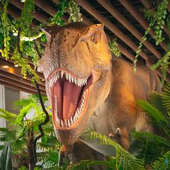 恐龍來了 (迷惘的人生) Tags: 南港區 臺北市 中華民國 citylink 恐龍 暴龍