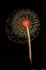 第8回いせはら芸術花火大会 8th Isehara Artistic Fireworks Festival (ELCAN KE-7A) Tags: 日本 japan 神奈川 kanagawa 伊勢原 isehara 芸術 artistic 花火 fireworks 磯谷 煙火店 isogai ペンタックス pentax k3ⅱ 2019