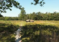 Dolmen / Hunebed in Valtherbos near Emmen (joeke pieters) Tags: 1480320 panasonicdmcfz150 hunebed dolmen valtherbos emmen drenthe nederland netherlands holland bijzonderebergwandeling landschap landscape landschaft paysage