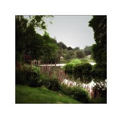 Stourhead Gardens (Martin Harris in Harlow) Tags: velvia50 scanned yashica635