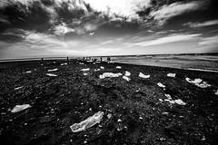 Island2018_BW0777 (schulzharri) Tags: iceland island schwarz weis black white landscape landschaft nord stein stone rock felsen eis ice