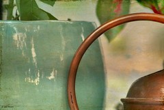 Garden Image (Gay Foster) Tags: gaynell gay foster canon cirve brass ceramic sea green semi abstract leaves white space