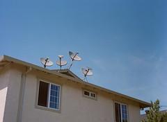 Alviso, California (bior) Tags: alviso sanjose california pentax645nii pentax645 6x45cm portra kodakportra mediumformat 120 portra400nc apartment dish satelite window