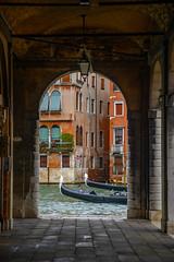 The Race is On (street level) Tags: italy venice gondola canal archway architecture travelphotography venezia italia europe citylife nikonz