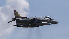 Yeovilton Arrivals Day 2019 - Spanish Navy EAV-8B Harrier II Plus (DaveGray) Tags: spanishnavy eav8b harrieriiplus yeoviltonarrivalsday canoneos70d
