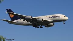 Airbus A380 -841 LUFTHANSA D-AIMJ 073 Francfort Mai 2017 (Thibaud.S.) Tags: airbus a380 841 lufthansa daimj 073 francfort mai 2017