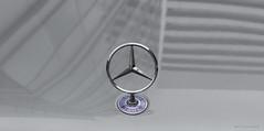 MB (Pieter Musterd) Tags: auto car reflection mercedes mercedesbenz circle logo icon pietermusterd musterd canon pmusterdziggonl canon5dmarkii canon5d nederland holland